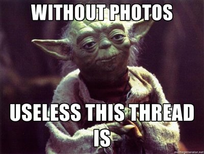 yoda_nopic_on_thread.jpg