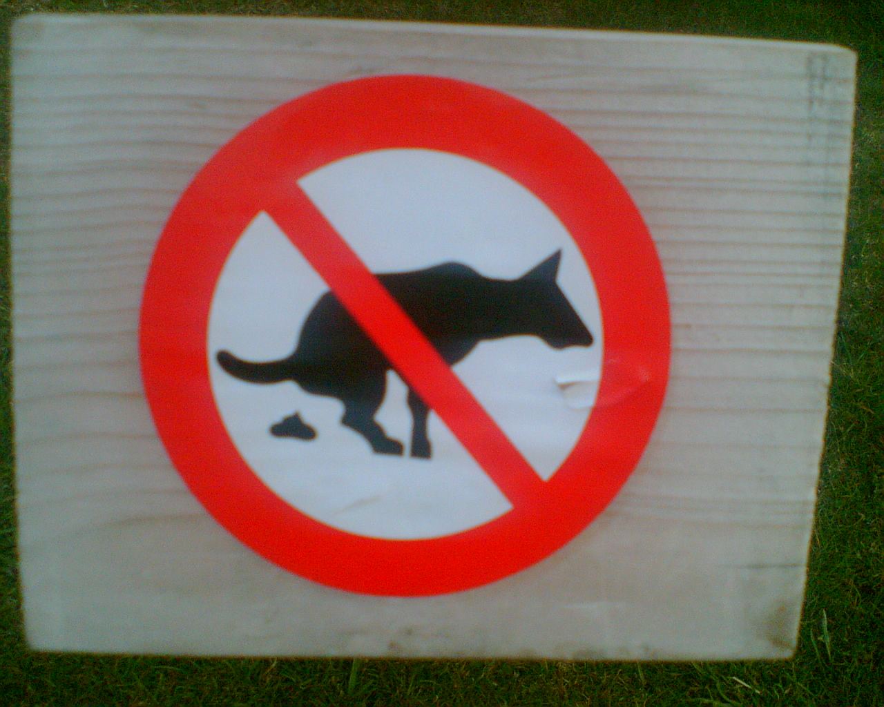 Sign no dogshit.jpg