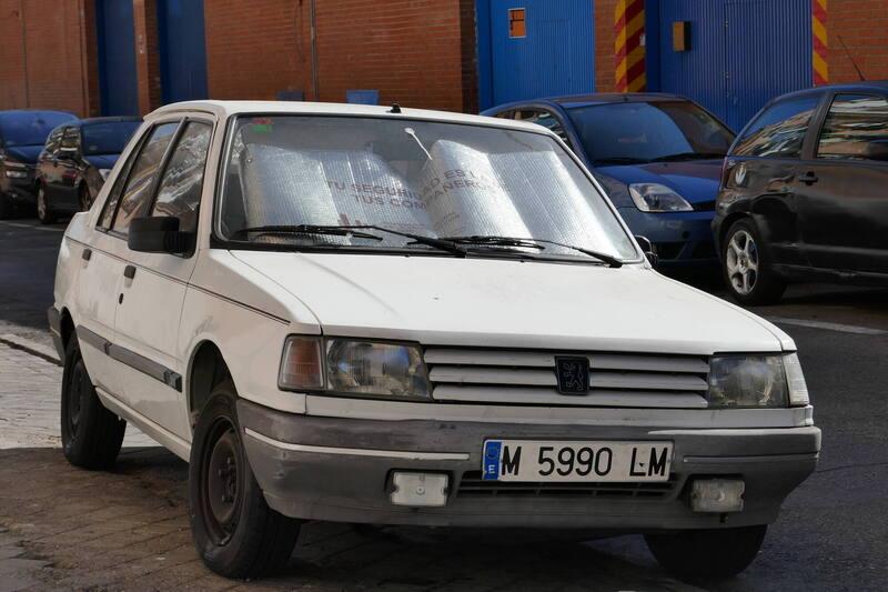 P1060136.JPG